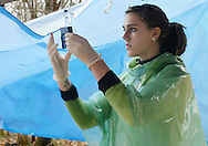 Liberty High School student Caitlin Baker looks at water samples from the Neversink River in Hasbrouck on Nov. 8, 2006. The students were testing water quality.