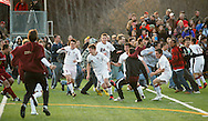 Freedom Plains, NY - Arlington High School boys' soccer players and fans celebrate after Rob Stevens, wearing number 8 at center, scored the winning goal in overtime against Horace Greeley in the Section 1 Class AA championship game on Nov. 7, 2009.