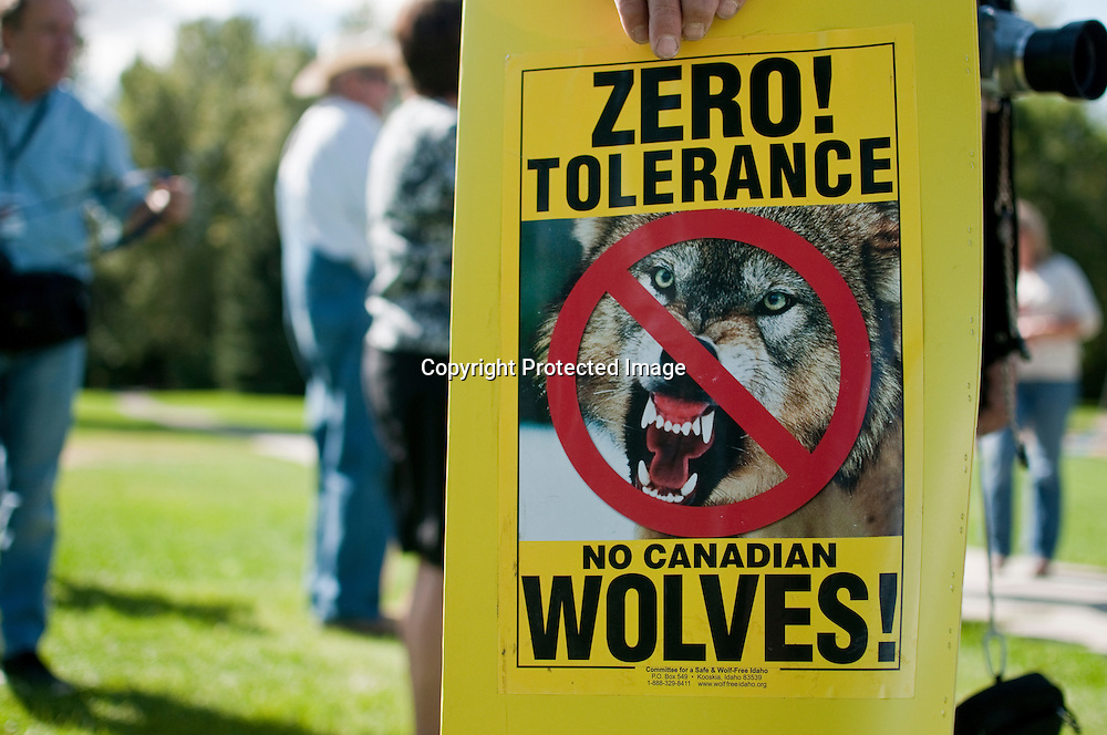 Anti wolf protest at Bogert Park, Bozeman, Montana. Hunters and ranchers were protesting against the number of  wolves in Montana and Idaho. They say wolves are killing too many game animals, carry disease, and killing livestock. They want the numbers reduced to only 150 wolves per state or removed from the area.