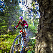 Heather Goodrich rides along a water area on summer singletrack in Alaska.