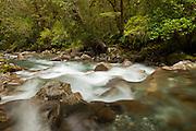 Cleddau River, Fiordland, New Zealand