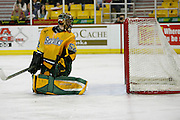 University of Alaska, Anchorage goalie, Nathan Lawson, looks back with disappointment as the puck falls off the back net at Sulivan Arena, Anchorage, Alaska, USA.