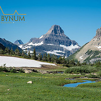 glacier national park preston park siyeh pass, reynolds mountain