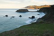 Morning light on coastal bluffs above Goat Rock, Goat Rock State Beach, Sonoma County, California