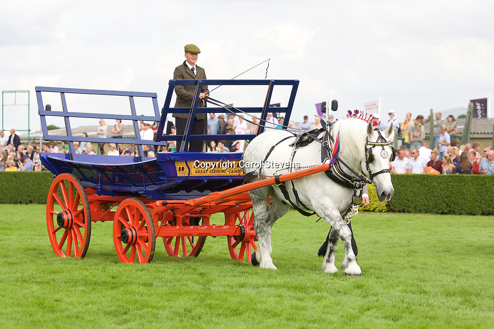 Great Yorkshire Show 2015  Heavy Horse Single Turnouts and Ladies' Carts