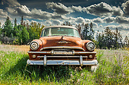 Old Red Plymouth in Grass, Straight On, Alberta Canada