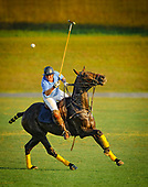 General Polo