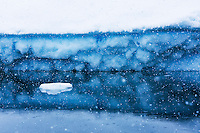 Snowflakes fall into the Ocean against the backdrop of a grounded Iceberg near Planeau Island.  Antarctic Peninsula.