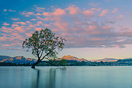 Oceania; New Zealand; Aotearoa; South Island; Otago, Wanaka,