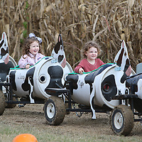 Nora-Kate Cleveland, 2, and Ellarose Krauss, 2, took a ride on the cow train Saturday at the Tupelo Buffalo Park's Pumpkin Patch