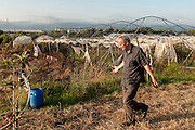 09 July 2016, Lamezia Terme Italy - Don Giacomo Panizza, Comunità Progetto Sud, inside a field burned by ndgrangheta.