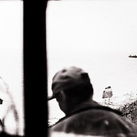 Local Moroccan fishermen prepare for the catch as a seagull awaits