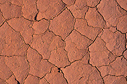 Detail of parched soil, Capitol Reef National Park, Utah USA