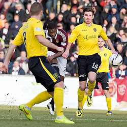 Livingston v Hearts | Scottish Championship | 7 February 2015