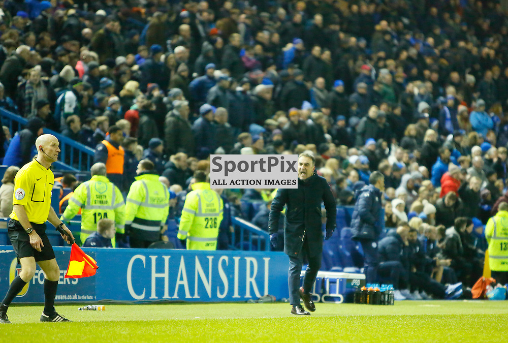 Carlos Carvalhal takes it out on the linesman during Sheffield Wednesday v QPR, SkyBet Championship, Tuesday 23rd February 2016, Hilsborough, Sheffield