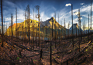 August 2015 fire in Glacier National Park, Montana