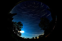Star trails over New Jersey. Composite of images (20:55 to 21:59) taken with a Nikon D850 camera and 8-15 mm fisheye lens (ISO 100, 10 mm, f/4, 30 sec). Raw images processed with Capture One Pro, and the composite generated using Photoshop CC (statistics, maximum).