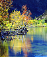 My photographic style is to use bright vivid colors which I captured in this photo of aspen colors reflecting in a lake in the Sierra Nevada Mountains.