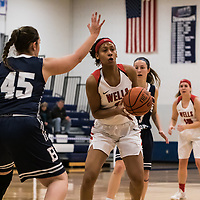 Women's Basketball: Penn State Berks College Nittany Lions vs. Wells College Express