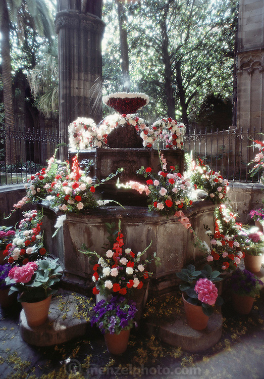 A fountain surrounded by flowers in the cloisters of the gothic cathedral in Barcelona, Spain.