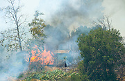 July 13, 2015 - Yorba Linda, CA, USA - <br /> <br /> water planes take to the sky to help put out fires<br /> <br /> One of at least two structures at Irvine Lake catches fire as a vegetation fire burns more than 100 acres Monday morning, threatened some structures near Irvine Lake and causing officials to close down Santiago Canyon Road in unincorporated Orange County, California <br /> ©Exclusivepix Media