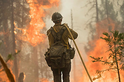July 28, 2018 - California, U.S. - Chumash Engine 802 firefighter cooling the edge. The Ferguson Fire now in its 20th day, started July 13 on the Sierra National Forest. The fire is now 62,883 acres with 39 percent containment and 3,558 personnel that are currently engaged on the fire which include 203 engines, 43 water tenders, 14 helicopters, 95 crews, 5 masticators and 62 dozers. There has been 2 fatalities and 9 injuries to date. 1 structure has been destroyed. (Credit Image: © Rubicon/Cal Fire via ZUMA Wire/ZUMAPRESS.com) (Credit Image: © Rubicon/Cal Fire via ZUMA Wire/ZUMAPRESS.com)