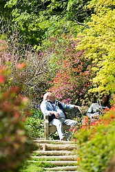 © Licensed to London News Pictures. 15/04/2014. Guildford, UK. A man rests on a bench.  People enjoy the afternoon  sunshine at Winkworth Arboretum in Surrey today 15th April 2014. Photo credit : Stephen Simpson/LNP