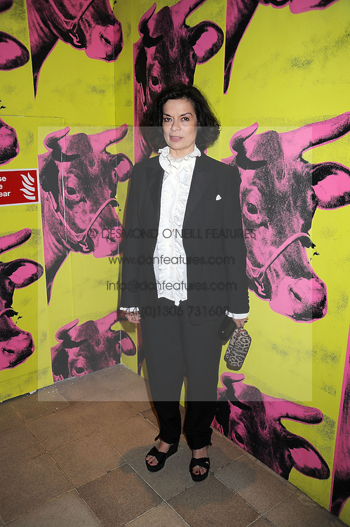 """BIANCA JAGGER at an exhibition of work by Andy Warhol entitled """"Other Voices, Other Rooms"""" at The Hayward Gallery, Southbank Centre, London SE1 on 6th October 2008."""