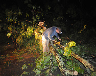 Ethan Peterson cuts trees blocking the road on County Road 101 from storm damage in Oxford, Miss. on Wednesday, April 27, 2011.