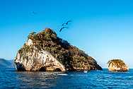 Los Arcos National Park and Marine Preserve on the Bay of Banderas,  near Puerto Vallarta. The rocky islets attract several species of birds including frigates shown here. Day trips to this area are popular for tourists visiting Puerto Vallarta, and here a small tour boat is seen beside one of the major islands in the National Park.