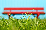 Green grass in front of a red bench against a blue background.