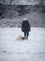 © Licensed to London News Pictures 14/01/2013.  Kenilworth, Warwickshire.   Dog walkers wake up to snow this morning over Kenilworth.  The week is expected to bring freezing temperatures and snow across the UK.  Photo credit : Alison Baskerville/LNP