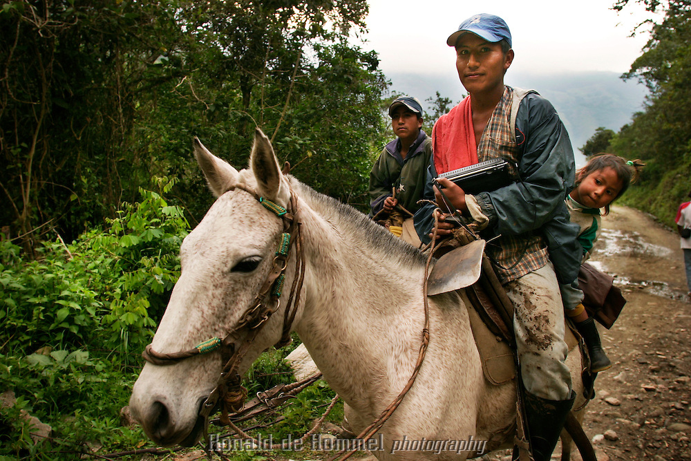 Rural transport is mostly by horse in Toribio..Toribio is a small town, capital of the mountainous region with the same name, in central Cauca Province. The area is an indigenous reserve for the Nasa indians and is governed by traditional tribal law. The indians are stuck in the middle between the permanent presence of several FARC camps and contingents of the governement army.  2003 Cauca province, southern Colombia.