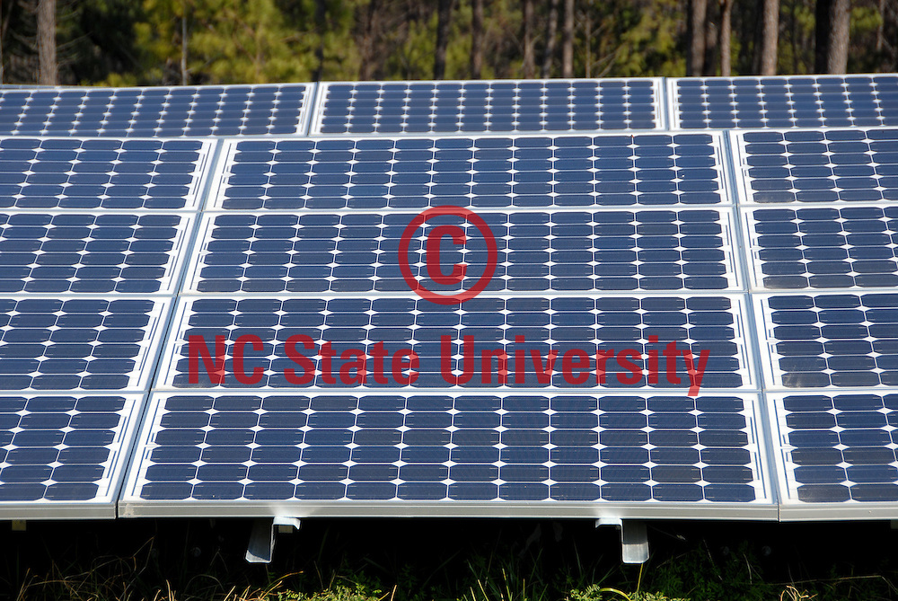 New solar array by RBC Center.                 PHOTO BY ROGER WINSTEAD
