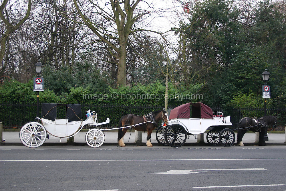 Horses and carraiges, St Stephens Green, Dublin, Ireland