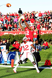 15 October 2011: Alphonso Valdez gets position but can't deter Tyrone Walker from making and end zone catch during an NCAA football game between the University of South Dakota Coyotes and the Illinois State Redbirds (ISU) at Hancock Stadium in Normal Illinois.