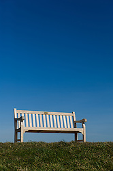 An empty wooden bench.