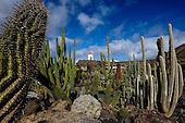 Spain-Lanzarote, Cactus Garden