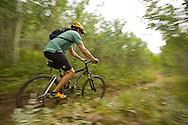 A mountain biker pedals on single-trak near Nederland, Colorado in summer time.