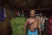 Jaffna after the war