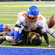 Delmar defender BROOKS PARKER (34) knocks the ball out of Milford wide receiver TYRON MIFFLIN (15) hands while stretching towards the in zone during the 2017 DIAA Division II state championship game between the Delmar and Milford Saturday, Dec. 02, 2017 at Delaware Stadium in Newark, DE.