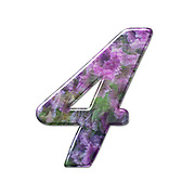 The number Four Part of a set of letters, Numbers and symbols of 3D Alphabet made with a floral image on white background