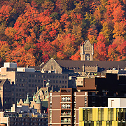 View to southwest from hotel room on Renee' Levesque of fall foliage and McGill University and Royal Victoria Hospital with Parc du Mont Royale behind, Montreal, Quebec, Canada