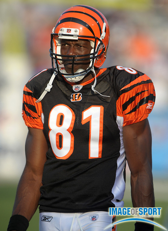 Aug 8, 2010; Canton, OH, USA; Cincinnati Bengals receiver Terrell Owens (81) during the first quarter of a preseason game against the Dallas Cowboys at Fawcett Stadium. Photo by Image of Sport