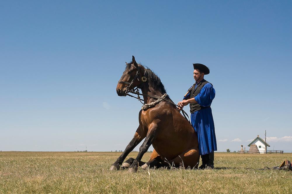Typical Hungarian herdsman's show, Hortobagy National Park, Hungary