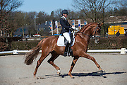 Emmelie Scholtens - Dorado<br /> Selectie WK Jonge Dressuurpaarden 2013<br /> © DigiShots