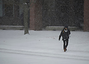 """Students cross the Library quad as snow falls on February 8, 2013. Winter storm """"Nemo"""" is expected to drop several feet of snow on the area."""