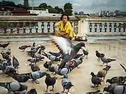 28 SEPTEMBER 2015 - BANGKOK, THAILAND: A woman feeds pigeons as a way of making merit at Wat Kalayanamit. Fifty-four homes around Wat Kalayanamit, a historic Buddhist temple on the Chao Phraya River in the Thonburi section of Bangkok, are being razed and the residents evicted to make way for new development at the temple. The abbot of the temple said he was evicting the residents, who have lived on the temple grounds for generations, because their homes are unsafe and because he wants to improve the temple grounds. The evictions are a part of a Bangkok trend, especially along the Chao Phraya River and BTS light rail lines. Low income people are being evicted from their long time homes to make way for urban renewal.    PHOTO BY JACK KURTZ