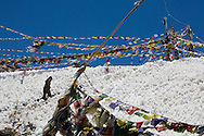 A tourist walks uphill through the snow and prayer flags, to a small gompa just behind the signboards at the Khardung La (Pass) at 5602m in the Nubra Valley, Ladakh on 4th June 2009. The valley of Ladakh is located in the Indian Himalayas, in the northern state of Jammu and Kashmir. Photo by Suzanne Lee