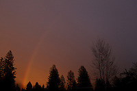 The end of a rainbow dips below the tree line of east Coeur d'Alene following a rain storm Friday, March 25, 2011.